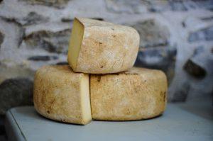 גבינות הוד השרון